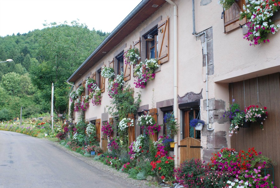 La maison des fleurs et des petits nains