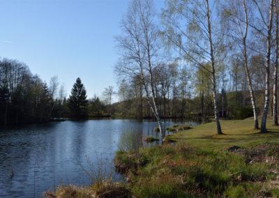 Un étang des Rouillons 5