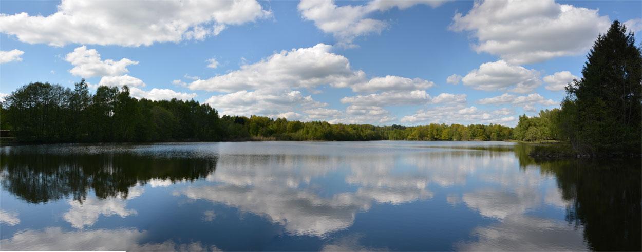 L'étang Pellevin