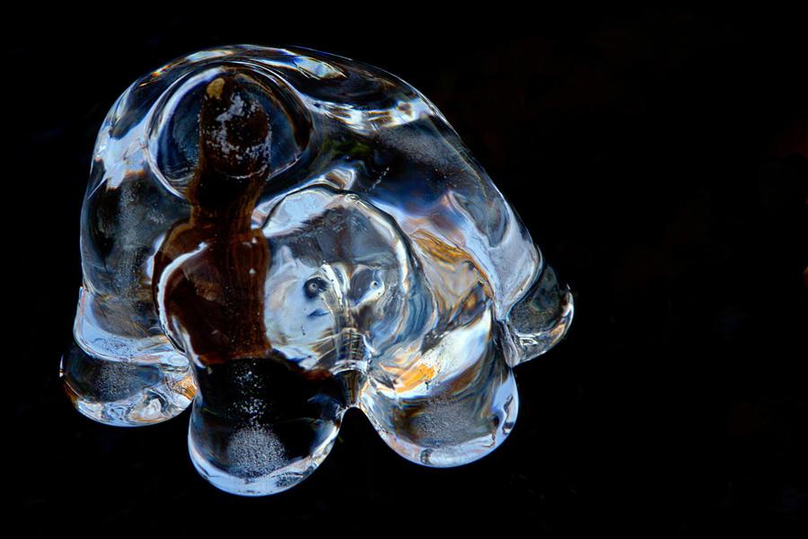 H V glace 10