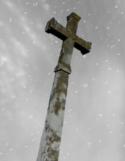 Croix de Viau des Champs